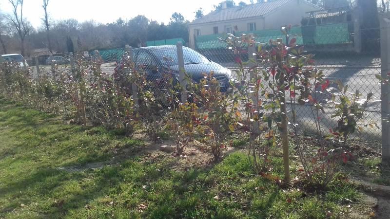 Nettoyage de terrasse et allée de jardin Libourne - LJ Paysagiste